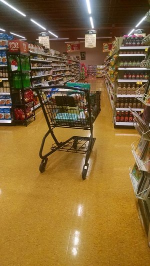 rsz_grocery_cart
