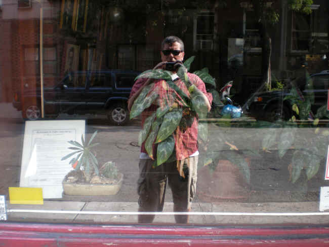 Self-portrait in a store window, Greenwich Village.