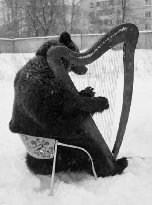 bear harp (2)