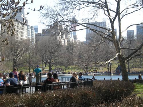 NYC3 (2)